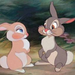thumper love