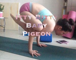 Itty Bitty Baby Pigeon