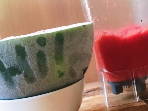 Easy 3 Ingredient Watermelon Sorbet Recipe